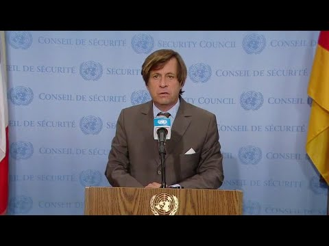 France on the Central African Republic, Yemen & Lebanon -  Media Stakeout (28 July 2020)