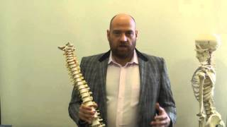 Аннотация французского семинара по остеопатии в Школе остеопрактика (обучение)