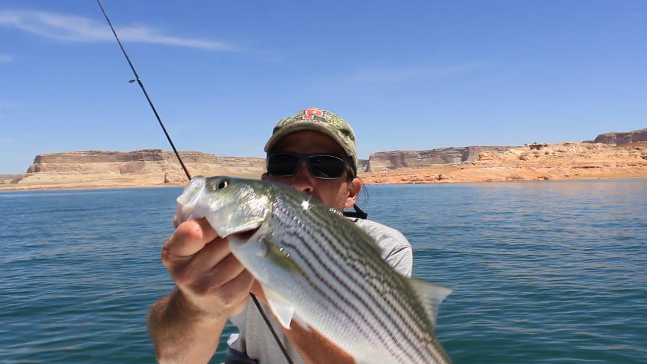 Fishing Technique
