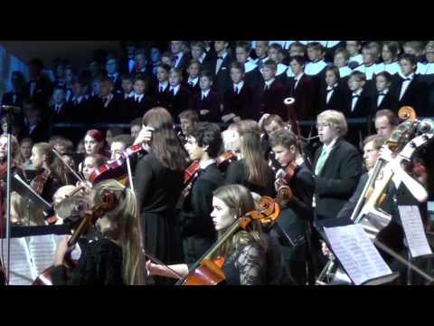 Sibelius. Finlandia (2015)