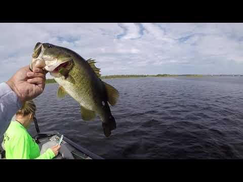 Johns Lake Groveland, FL BASS FISHING!