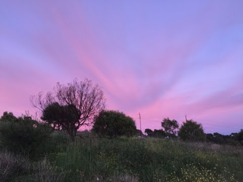 cloaked celestial bodies in the sky above Adelaide captured emitting audible signals