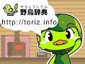 野鳥事典/鳥の動画/カワラヒワの鳴き声