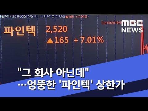 """""""그 회사 아닌데""""…엉뚱한 '파인텍' 상한가 (2019.01.12/뉴스투데이/MBC)"""