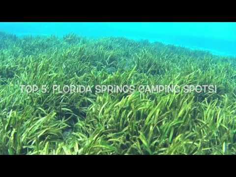 Top 5! Florida Springs Camping Spots