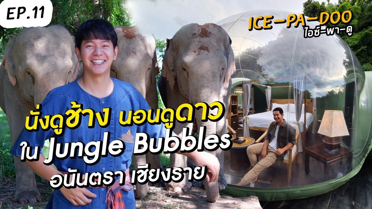 นั่งดูช้าง นอนดูดาว ใน Jungle Bubbles อนันตรา เชียงราย | EP.11 ICE-PA-DOO #ไอซ์พาดู