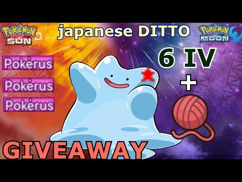 ✩✩ GTS GIVEAWAY ♪ 6 IV's SHINY DITTO   DESTINY KNOT ✩✩