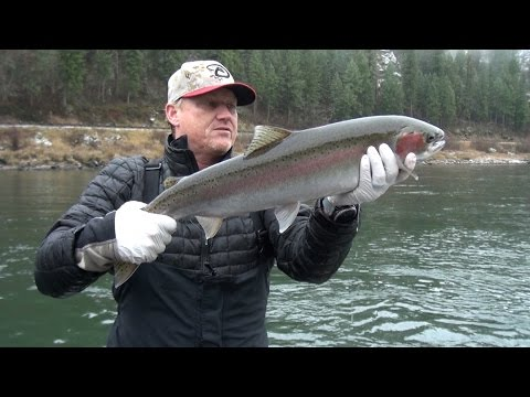 Clearwater River, Idaho Steelhead Fishing. Side drifting & back trolling.