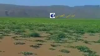 صوت ساحلي بدوي مكيراسي