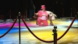 В Сочи выступит Золотой цирк Никулина с шоу воды, огня и света Новости 24 Сочи Эфкате