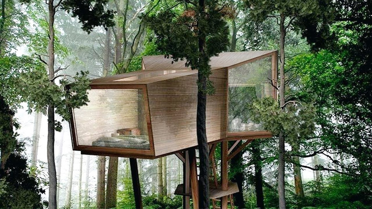 Cool Modern Tree House Design And Ideas Best Treehouse Youtube
