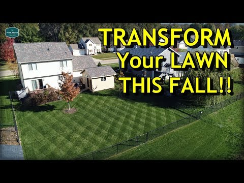 Transform Your Lawn THIS FALL // Complete Fall Lawn Care Program