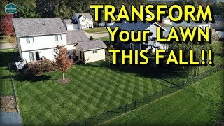 Lawn Care - Transform Your Lawn THIS FALL // Complete Fall Lawn Care Program