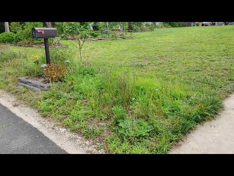 stormwater-runoff-solutions-for-sloped-suburban-front-yard