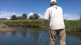 Wyomings Western Ways Trout Style