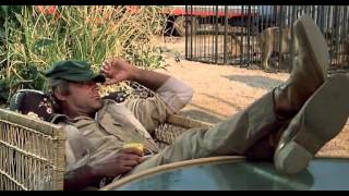 Я - за гиппопотамов! (В болоте с гиппопотамами) / I'm for the Hippopotamus (1979 г., комедия, )