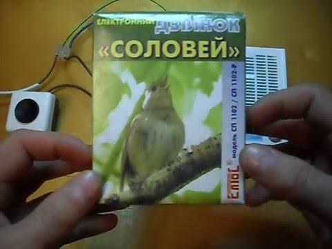 видео: Электрический звонок «СОЛОВЕЙ» СП1102-Р (С) птичья трель