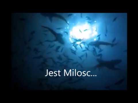 Jerzy Fiedorczuk-Przeznaczenie,milosc ( Official Video )