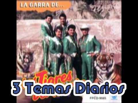 MP3 de Corrido A Edgar Tamayo Los Tigres Del
