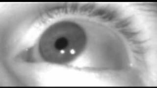 Eye movements - Blink and Saccades at 600 frames per second