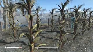 【Fallout4】スロッグ改装!ボストン市営プールなんだぜ! Fallout 4 ht...