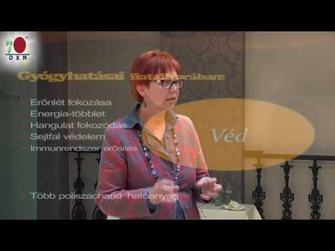 Mi gyógyítunk, vagy a gyógygombák? Dr Csizmadia Beáta előadása videó letöltés