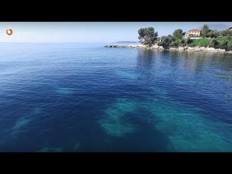 Villa near Monaco with private beach