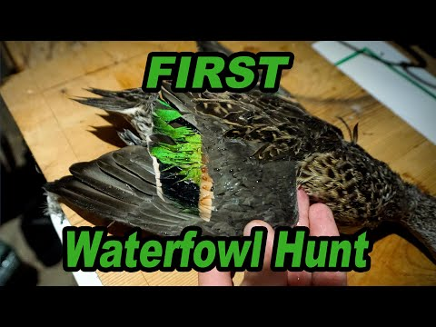 Duck Hunting Ohio! - First Time