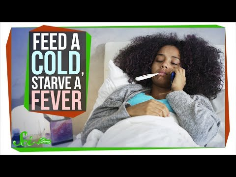 Should You Really 'Feed A Cold, Starve A Fever'?