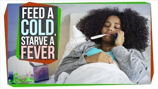 Should You Really 'Feed a Cold, Starve a Fever'? Mp3