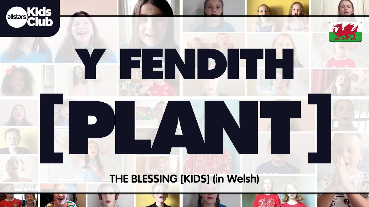 Y FENDITH  [PLANT] - The Blessing in Welsh [KIDS]