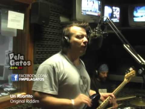 Un Kaurtito - Reggae en PelaGatos - Original Riddim