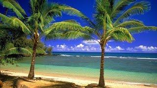 Tropical beaches Relax Freestyle music Тропические пляжи Курорт