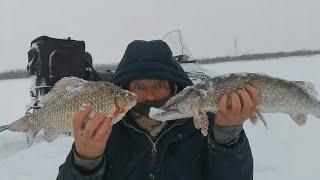 Рыбалка на сети/Проверка Сетей/Зимняя Рыбалка!