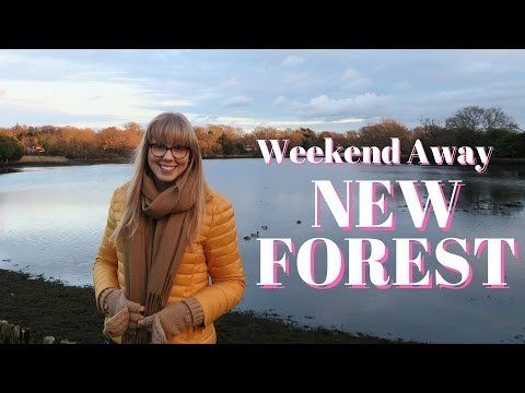 NEW FOREST WEEKEND TRIP VLOG