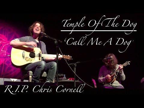 'Call Me A Dog' Lyrics - Temple Of The Dog