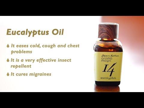 eucalyptus-oil-i-blossom-kochhar-aroma-magic