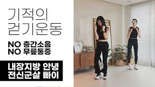 기적의 걷기운동, 전신군살 + 내장지방과 굿바이~
