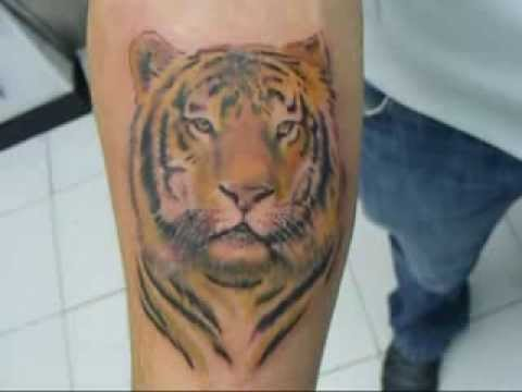 Tatuaje Tigre Color Youtube