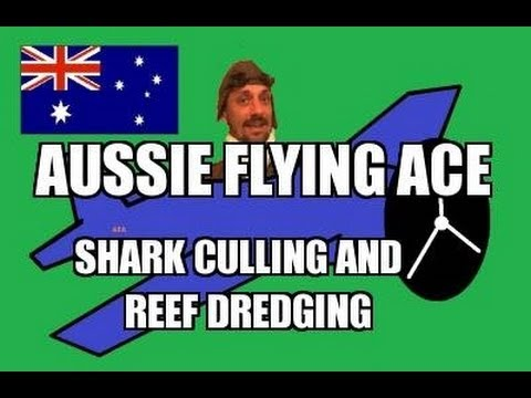 SHARK CULL AND GREAT BARRIER REEF DREDGING?