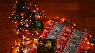 Распаковка новогодних подарков 2017// Зверопой отзыв//Співай мультфільм