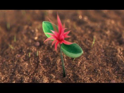 Let it Grow - Dr. Seuss' the Lorax (2012) Ending