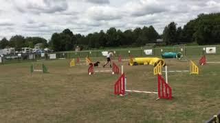 Rickfield Farm Maggie National Championships Jumper 1 clear