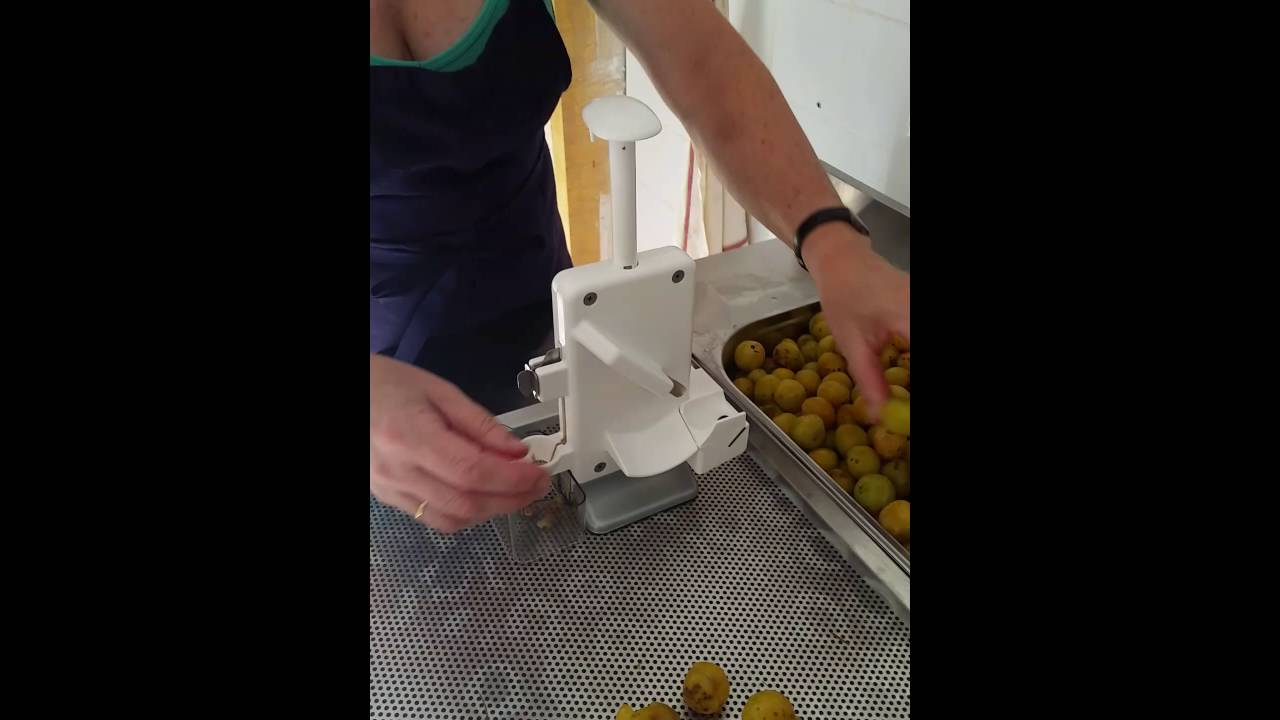 preparation des mirabelles pour le rhum arrangé