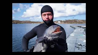 Norway best spearfishing moments 2015