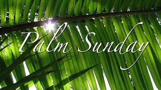 March 28 Palm Sunday Worship Service