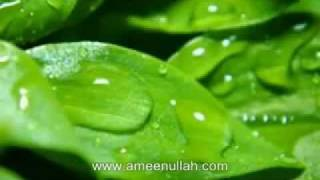 Da Monz Tariqa by Sheikh Ameen Ullah Part 3 of 6 (Pashto Bayan)