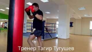 Тайский бокс (DVD курс)