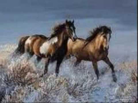 Natasha Bedingfield Wild Horses Lyrics