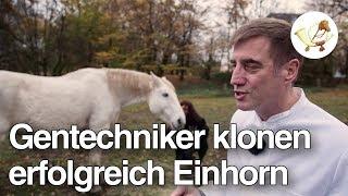 Sensation: Gentechnikern gelingt es, Einhorn zu klonen!